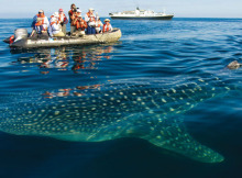 Galapagos_isla