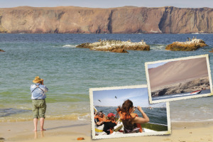 Islas Balllestas y Reserva Nacional de Paracas