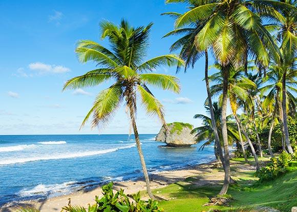 6bgi_islas-del-caribe