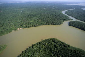 Tour Amazon Rainforest