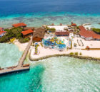 de-palm-island